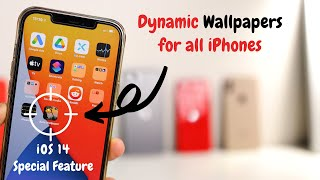 Popular HD iPhone 11 Wallpapers Related to Apps