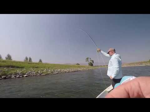 Sunday Funday - Fly Fishing Montana's Yellowstone River