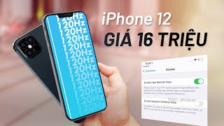 Lộ video trên tay iPhone 12: giá chỉ từ 16 triệu