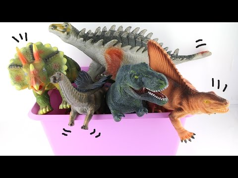 Dinosaurs Box: Jurassic Park Toys- 공룡세트 박스 탈출기 T Rex Triceratops- Learn Names Of Dinosaurs For Kids