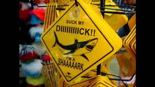 I'M A SHAAAAARK
