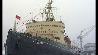На ледоколе «Красин» открылась выставка о жизни обитателей морей Арктики во время полярной ночи