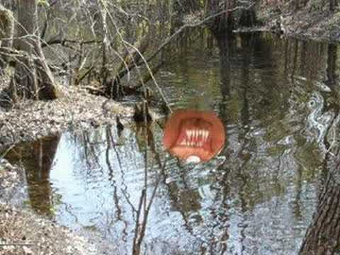 Unexplained Swamp Monster Sighting - YouTube Real Sightings Of Monsters