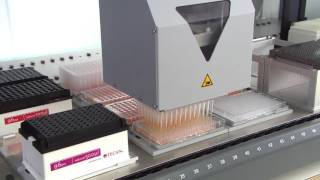 MCA 384 is pipetting into different plate formats