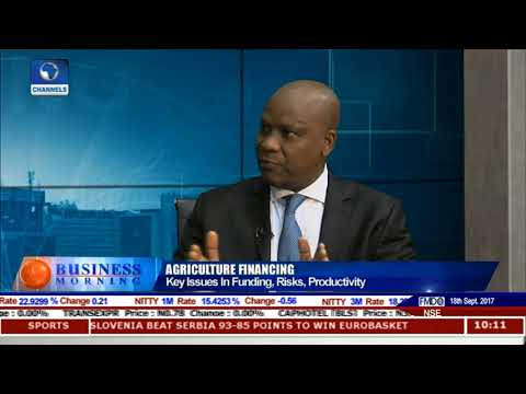 Key Issues In Agricultural Financing, Risks, Productivity Pt.2 |Business Morning|