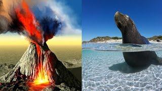 What would if Earth's Topography was inverted | Land become Ocean and Ocean became Land | Science