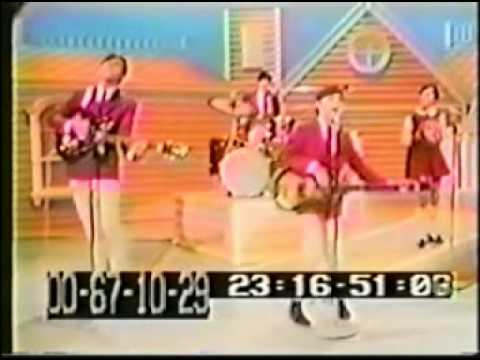 The Cowsills The Rain the park, & other things Live