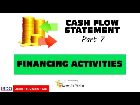 CASH FLOW STATEMENT 7 - Financing Activities
