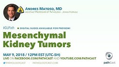 hqdefault - Mixed Epithelial And Stromal Tumor Of The Kidney