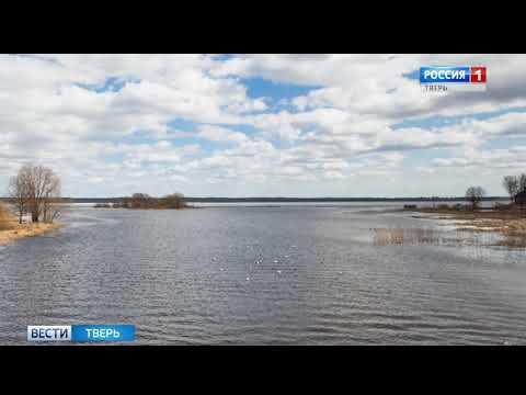 В Тверской области подросток утонул в озере