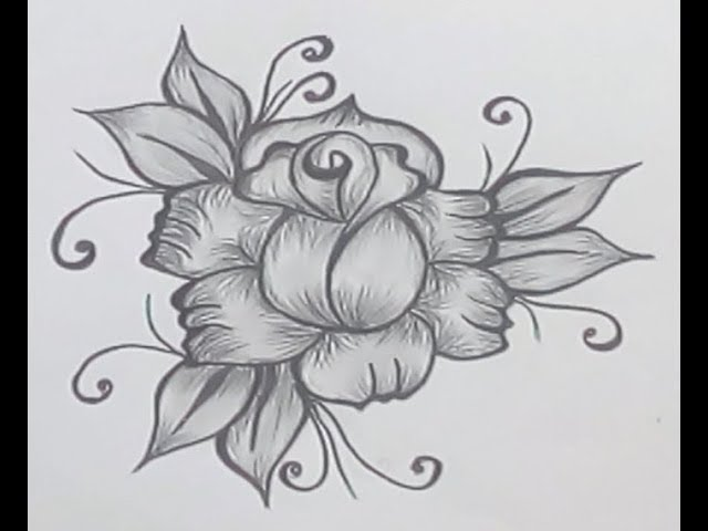How To Draw Flowers Draw A Flowers Draw Flower Easy Step By Step Youtube