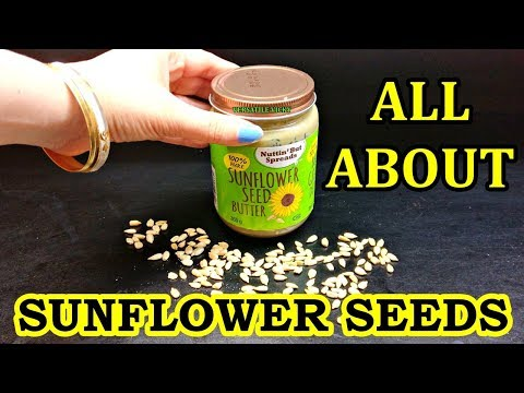 sunflower-seeds-for-weight-loss-|-sunflower-seed-benefits-and-side-effects