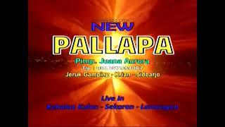 Wil - (Wanita Idaman Lain) - Putri Rahayu - New Pallapa Live in Kebalan Kulon Sekaran Lamongan 2012