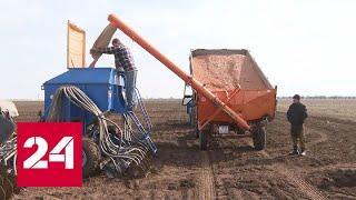 Посев. Как проходят весенние полевые работы. Специальный репортаж - Россия 24