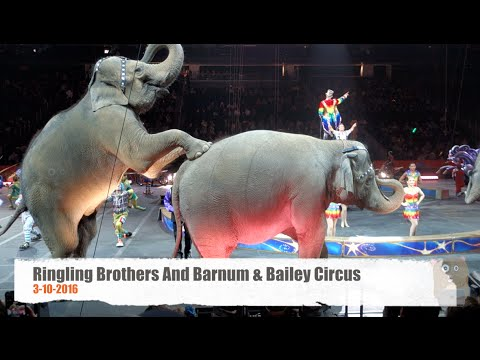 Ringling Bros. And Barnum & Bailey Circus - With Elephants