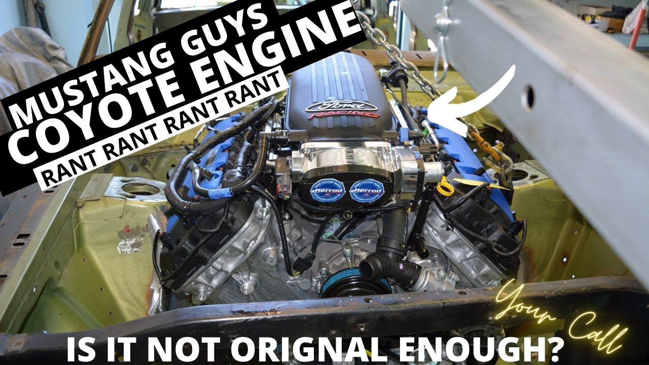 Mustang Guy Coyote SWAP RANT! ( So You Want To Do A Swap HUH? ) Ep2
