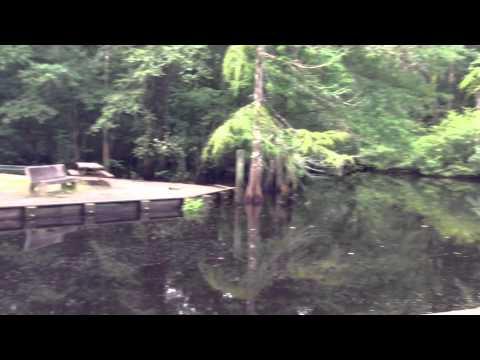 Savannah Oaks Rv Youtube