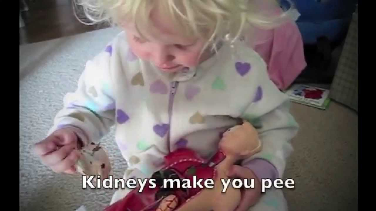 2 Year Old Toddler Names All The Organs Of The Body And Their