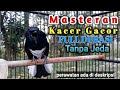 Masteran Kacer Gacor Full Durasi Tanpa Jeda  Mp3 - Mp4 Download