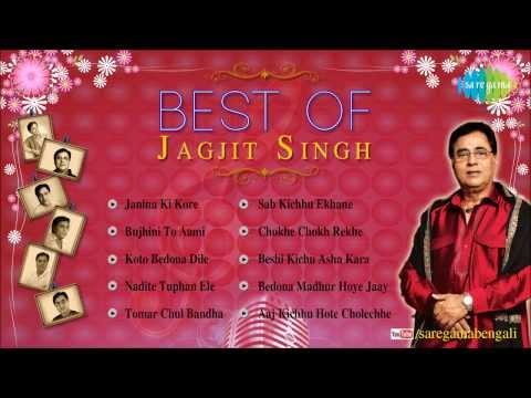 Best of Jagjit Singh | Bengali Modern Songs Audio Jukebox | Jagjit Singh