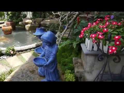 HOÀN THÀNH VÀ THẢ CÁ KOI BƯỚM HỒ KOI NHÀ 034 PHÚ GIA   PMH   Q7 ngay 19 07 2012