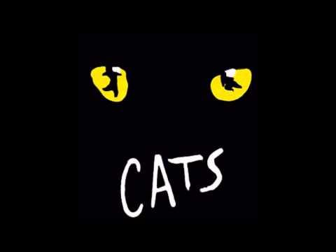 Cats: 6- The Rum Tum Tugger