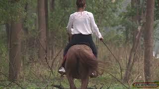 湘燕美女骑马之森林野骑Chinese Girls Riding Horses In The Forest