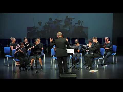 London Mozart Players at Taaleem's Dubai British School Jumeirah Park - 1st May 2018.