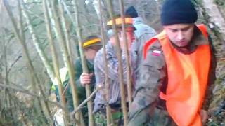 Polowanie Na Dziki Wieża Aport Zbiorówka Hunting In Poland Jagd Auf Wilde Chasse Sauvage