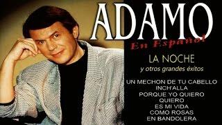 Adamo - La Noche Y Otros Grandes éxitos En Español