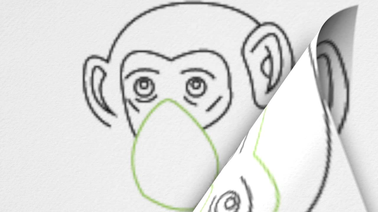 how to draw a chimp or chimpanzee step by step youtube
