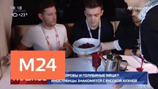 Какие блюда русской кухни особенно понравились иностранным болельщикам? - Москва 24