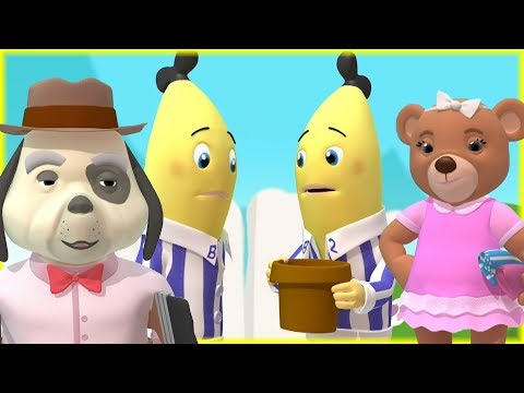 gardening-bananas-|-morphle-and-friends-|-cartoons-for-kids|-bananas-in-pajamas