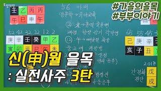 [중급] 60강 - 신(申)월의 을목 실전사주 3탄 - 부부이야기