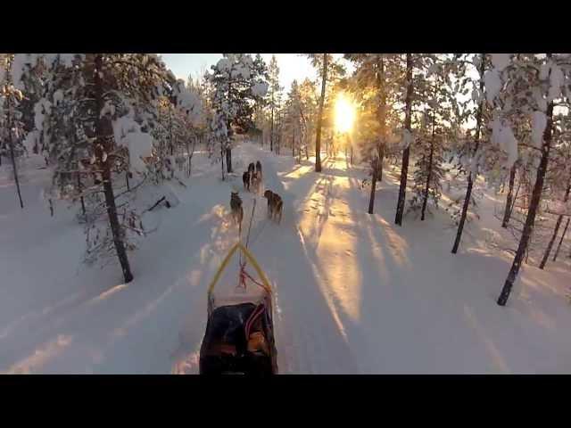 GoPro Hero 3: Best of Husky Sledding in Norway 2013