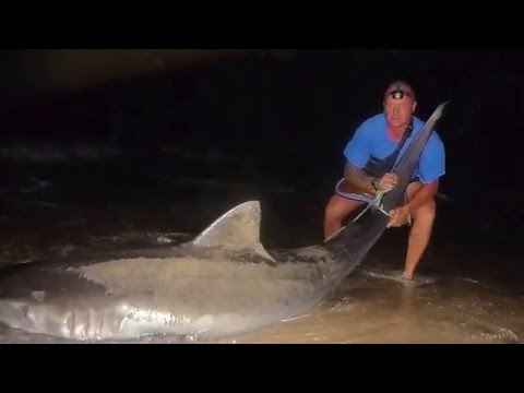 Cabo Verde -  Extreme Tiger Shark Fishing From The Beach By Mirko Zanetti