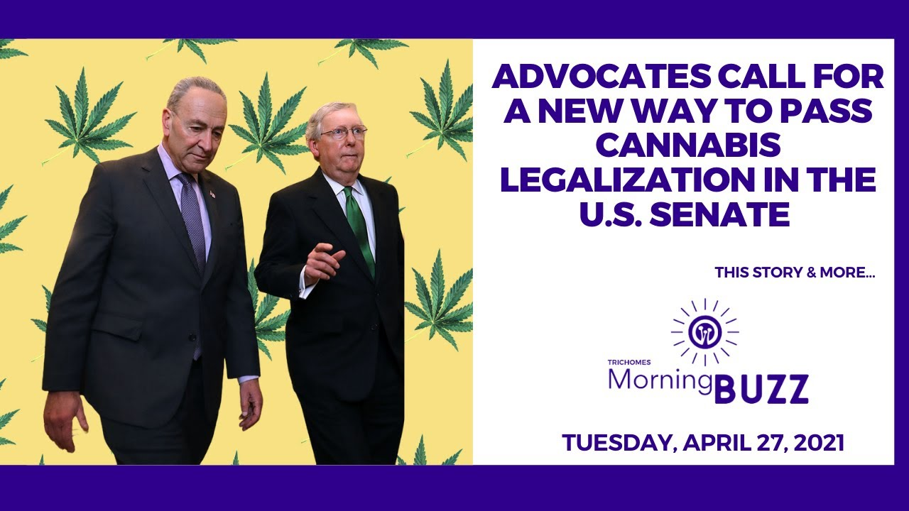 Advocates Call for New Way to Pass Cannabis Legalization in the U.S. Senate | TRICHOMES Morning Buzz