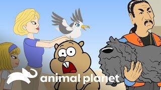 Animales rescatados por famosos | Animales y famosos | Animal Planet
