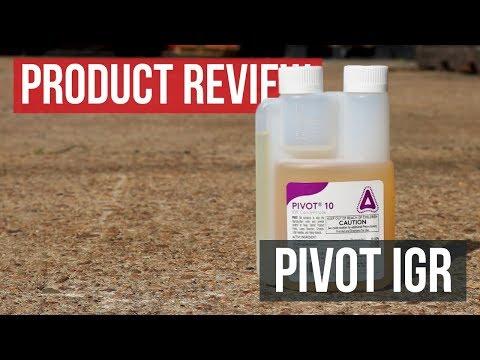 9 Best Flea Spray For Yard 2020 Reviewed Pestpolicy
