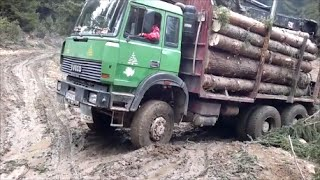 Iveco 6x6 Holztransporter