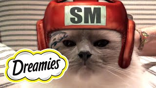 Dreamies- Snacky Mouse