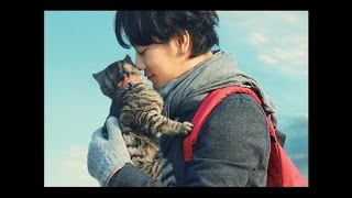 Album: 「世界から猫が消えたなら」オリジナルサウンドトラック Artist:...