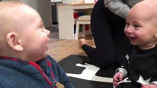 Funny babies ❤️ reactions to cousins meeting for the first time! Ellen degenerous ridiculousness
