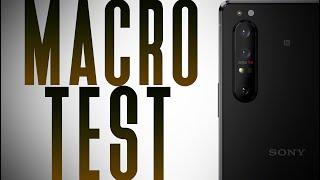 Download Lagu Sony Xperia 1 II Macro Photography vs Huawei P40 Pro, S20 Ultra, Sony A7 III mp3
