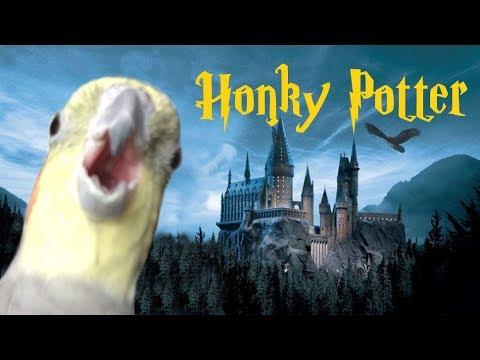 Honky Potter