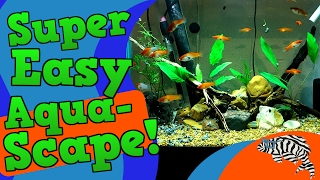 Simple, Easy and Attractive Aquascape!