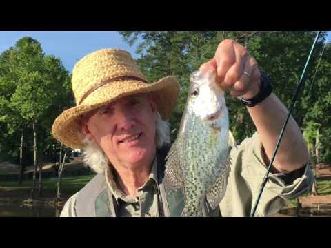 Georgia Fishing Tips - Crappie Fishing In Georgia