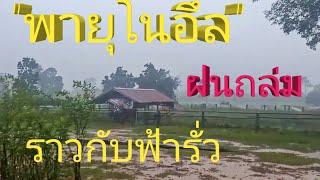 """มาฮอดเแล่ว !!! """"พายุโนอึล"""" ฝนตกหนักราวกับฟ้ารั่ว !! ความดีใจของพี่น้องเกษตรกรชาวนาในรอบหนึ่งปี"""