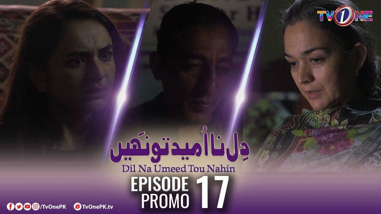 Download Dil Na Umeed Toh Nahi   Episode 17 Promo   Tv One Dramas