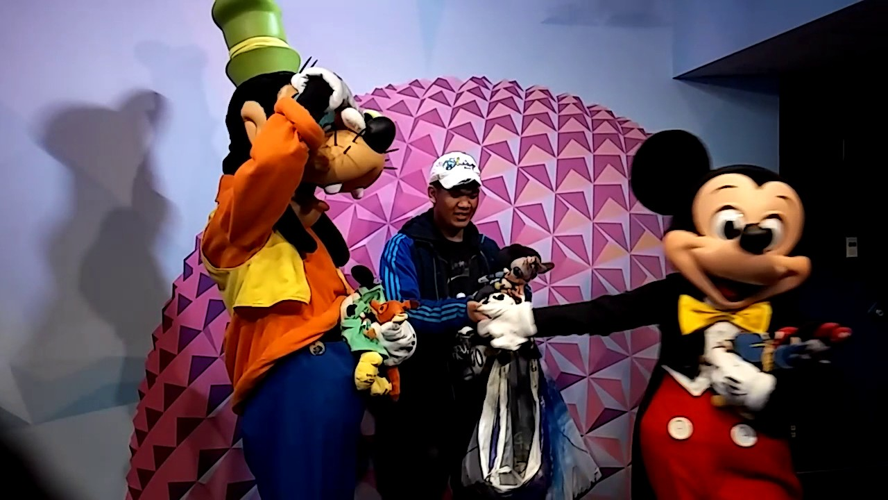 Epcot visa meet and greet new location youtube epcot visa meet and greet new location m4hsunfo Choice Image